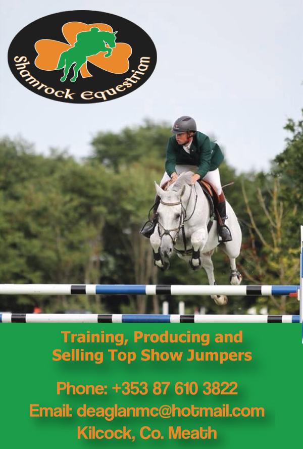 Shamrock-Equestrian