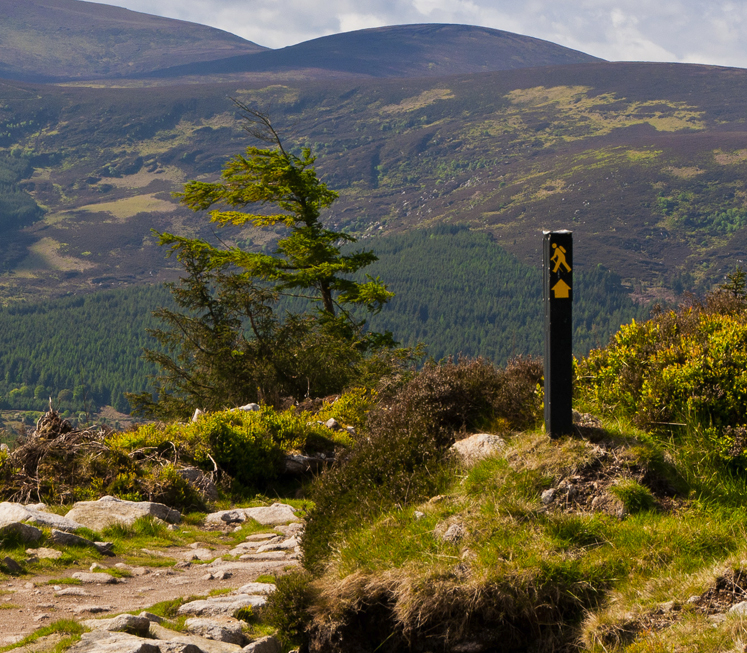Walking the Wicklow Way – Trails and Paths